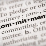 commitment-superior-pay-per-head-services